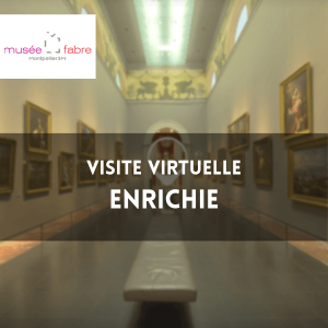 MUSEE FABRE MONTPELLIER